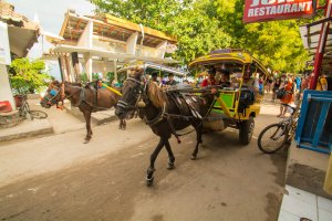 traveling Gili T, learn about Bali, traveling Bali